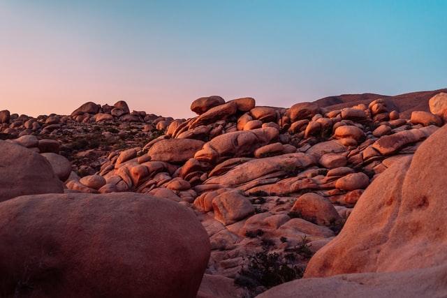 Vibrant scenery at Joshua Tree National Park.